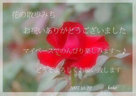 a0058167_14533681.jpg