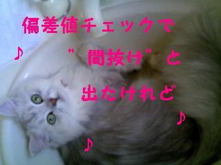 f0111467_13575013.jpg