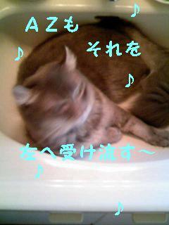 f0111467_13581598.jpg