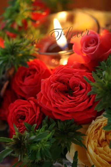 Green  Rose_f0127281_1633660.jpg