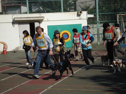 犬の運動会♪_d0087483_19123510.jpg