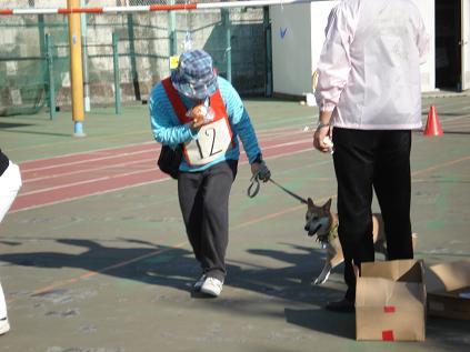 犬の運動会♪_d0087483_19133611.jpg