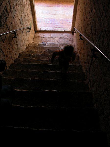 南フランスからパリへ/コルビュジェとアールト、そしてシトー派修道院を訪ねる旅_d0027290_12562078.jpg