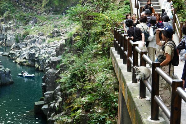 ウルトラ九州横断の旅_c0049299_22372570.jpg