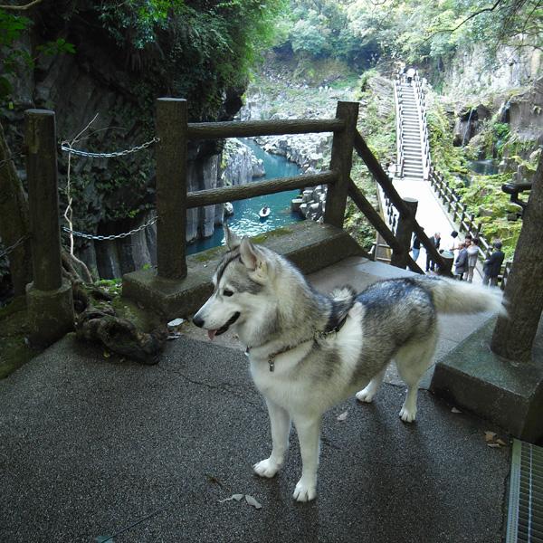 ウルトラ九州横断の旅_c0049299_22413929.jpg