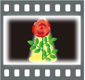 b0020911_1473493.jpg