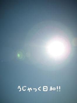 f0129214_21534242.jpg
