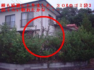 f0031037_2012123.jpg