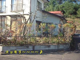 f0031037_20121547.jpg