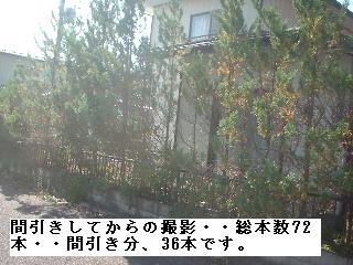f0031037_20132516.jpg