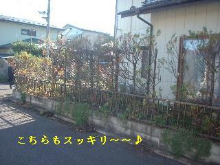f0031037_20134572.jpg