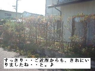 f0031037_20141680.jpg