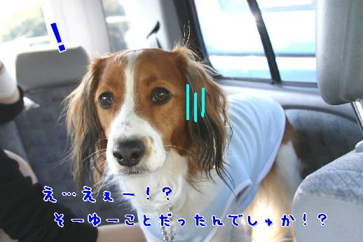 d0013149_1502521.jpg