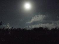 沖縄旅行のこと、長いです。(前編・写真が入らないから)_c0092152_5391449.jpg