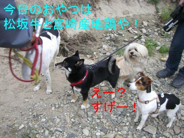 f0053952_19431437.jpg