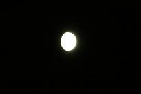 今夜は十三夜_f0139963_20255873.jpg