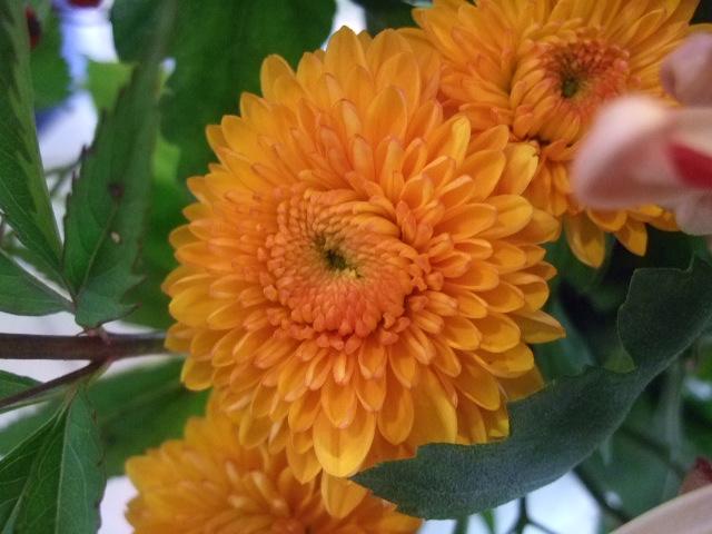 オークリーフ花の教室(望月さんの作品)_f0049672_1320619.jpg