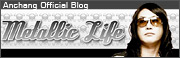 AnchangOfficialBlog Metallie Life