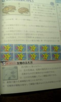 f0155886_2312120.jpg