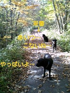 f0148927_1830138.jpg