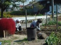 サツマイモ掘り_c0108460_14444088.jpg