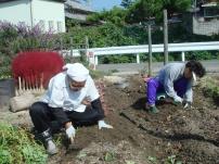 サツマイモ掘り_c0108460_1444554.jpg