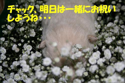 f0121712_2244145.jpg