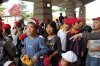 鳴滝第一・第二小学校2年生遠足サポート_c0108460_16112197.jpg