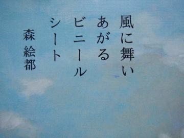 風に舞いあがるビニールシート_c0032193_21271679.jpg