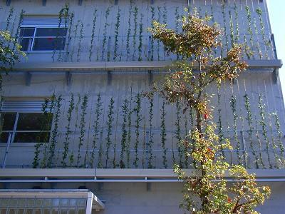 環境建築見学会に行きました_e0114895_17423581.jpg