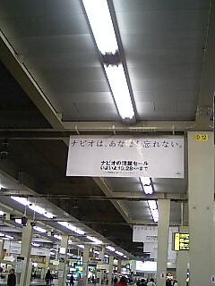 f0139405_14105665.jpg