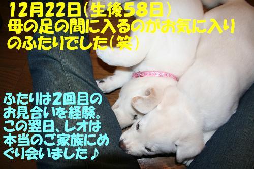 f0121712_1643645.jpg
