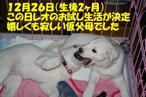 f0121712_1644498.jpg