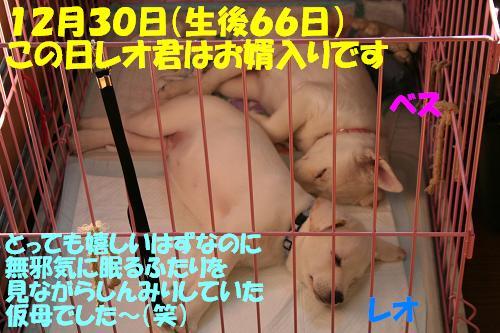 f0121712_1645916.jpg