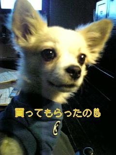 f0148927_18495066.jpg