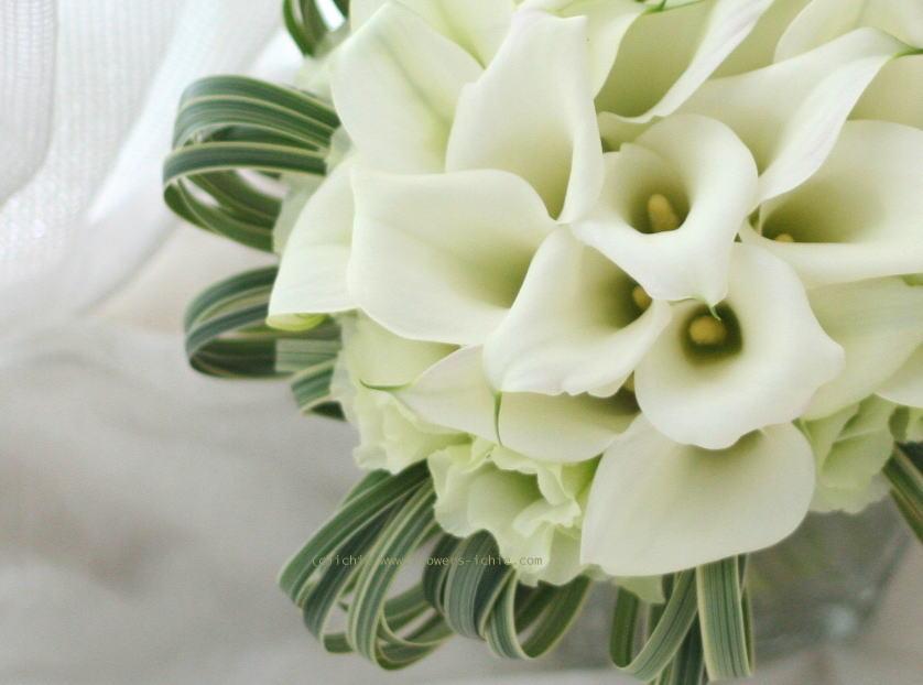 花を仕事にするということ 2 _a0042928_035377.jpg