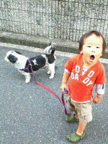 散歩_c0113733_011873.jpg