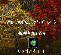 f0140642_20171392.jpg