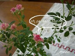 c0098050_12305552.jpg