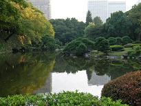 日比谷公園にお住まいの方々_f0139963_6482983.jpg