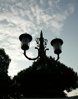 日比谷公園にお住まいの方々_f0139963_6584495.jpg