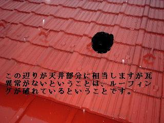 f0031037_10462021.jpg
