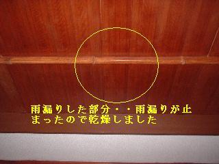 f0031037_1046376.jpg