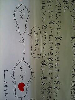 f0099140_703595.jpg