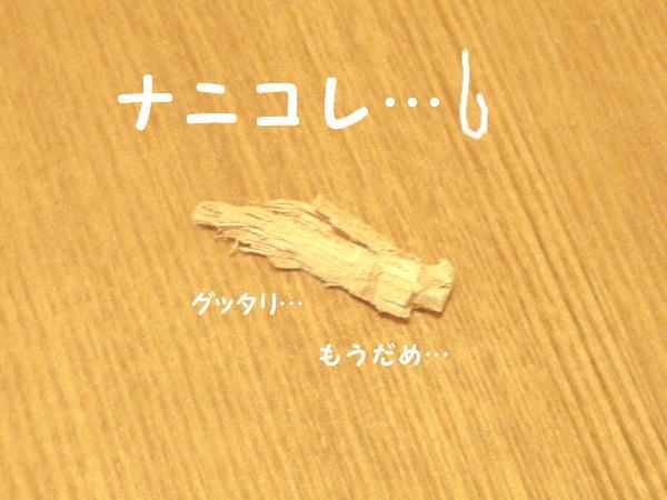 f0132055_20531376.jpg