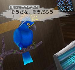 b0046686_10412194.jpg