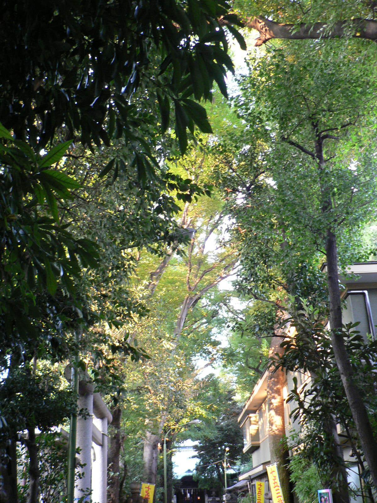 戸越八幡神社_e0123189_12215340.jpg