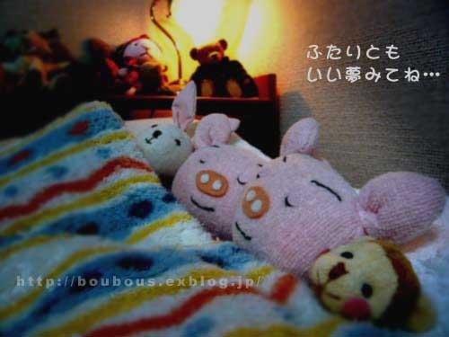 おやすみなさいです…_d0128697_1553857.jpg