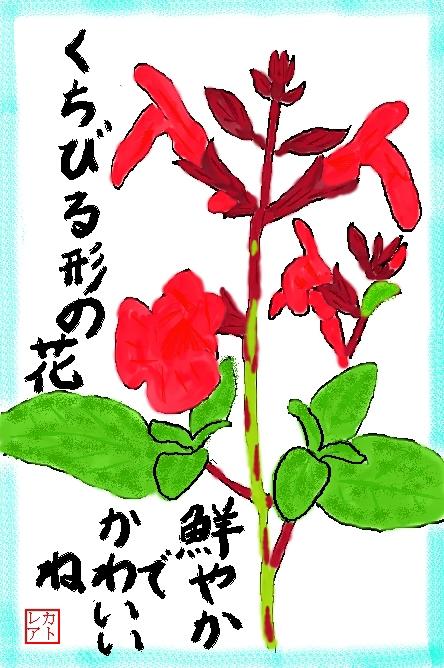 f0124098_1352329.jpg