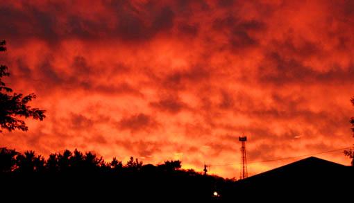 今日の真っ赤な夕焼け_e0054299_1810415.jpg